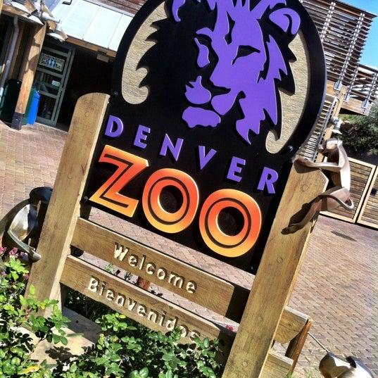 Zoo Lights Parking