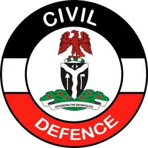 Insecurity: Civil Defence Trains 2000 Hunters In South East