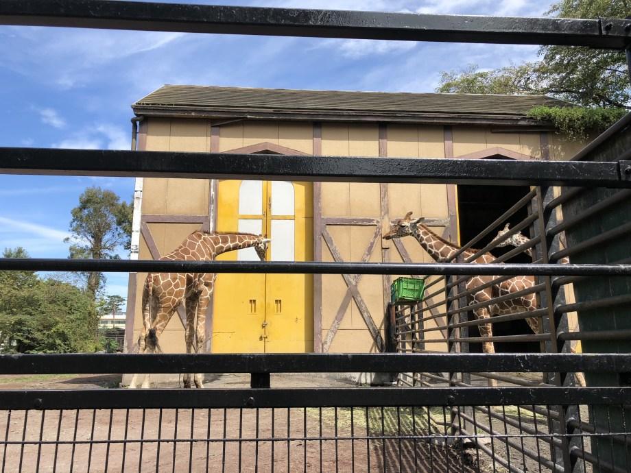 羽村動物園