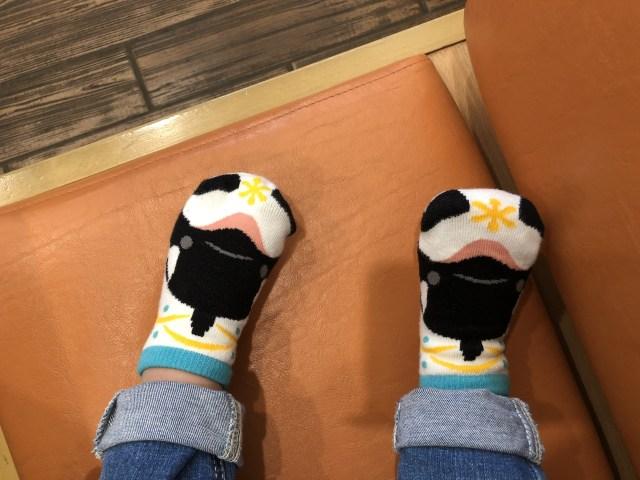 鴨川シーワールドのお土産で買った靴下
