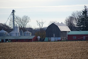Hamilton Backroads