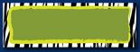 Zebra Border Banner