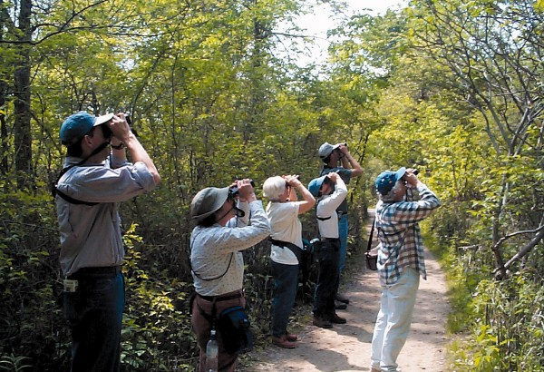 Bird Walk at San Joaquin Wildlife Sanctuary