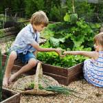 Children's Garden Workshop