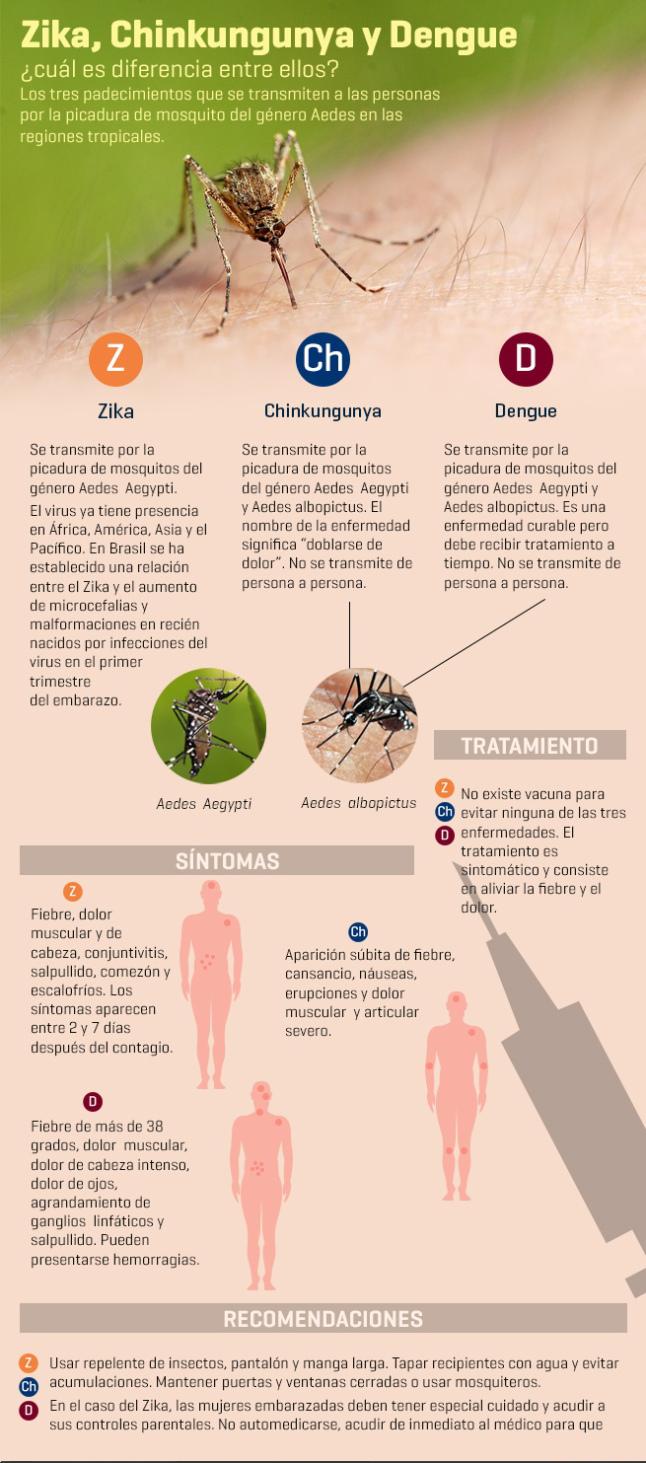 zika-chinkungunya-dengue-infografia1