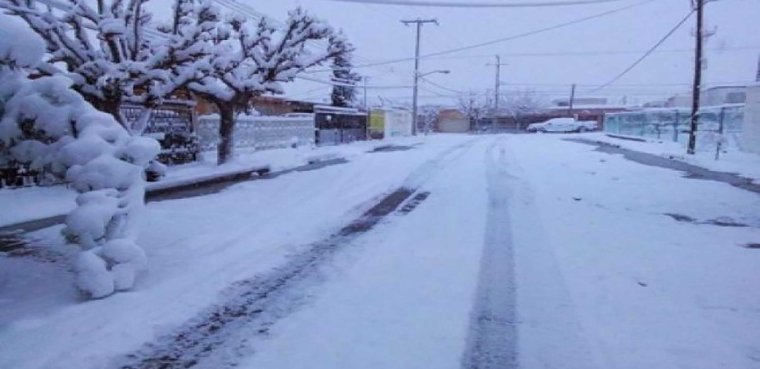 nevada norte 1