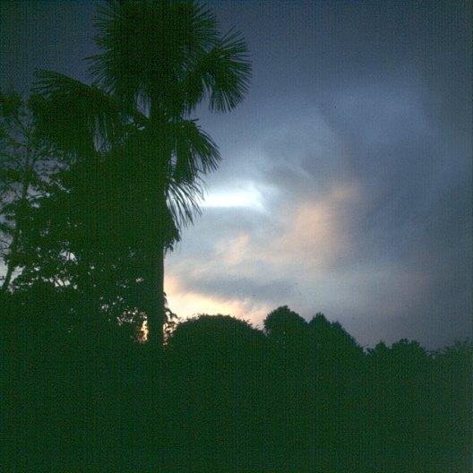 amazonas-tropischer abendhimmel