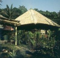 amazonas-urwald-hotel