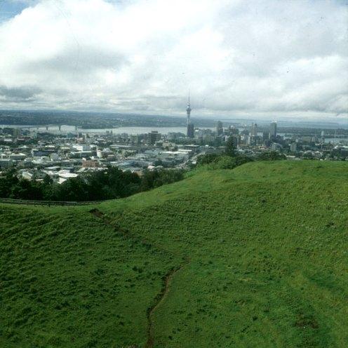 auckland-überblick