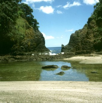 bay-of-islands-durchblick