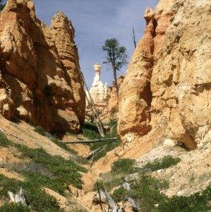 bryce-canyon-kopf-unten
