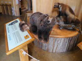 canada-heimatmuseum062