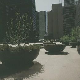 chicago-pflanzkasten auf viel beton