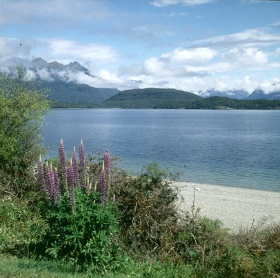 neuseeland-christchurch-wanaka 2001