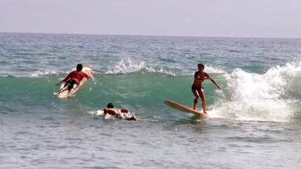 hawaii-Männlein und Weiblein in den Wellen 031