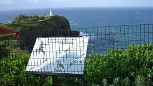 hawaii-Vogelschutzgebiet 085