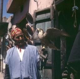 Marokko-Marrakesch-Falkner 1995