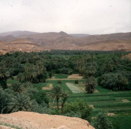 Marokko-Draatal 1995