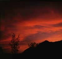 namibia--aiais Flußoase 1987