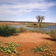 namibia-wüstenidylle 1987