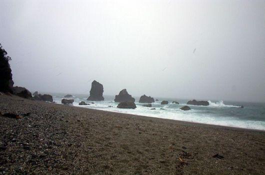 neuseeland-stewart-island-2001