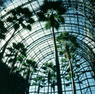 new-york-Wintergarden 1983