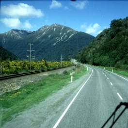neuseeland queenstown-ginster 2001