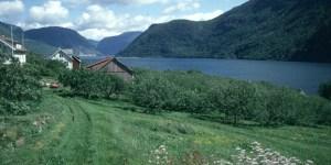 sued-norwegen-fjord-idylle
