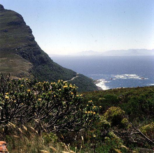 Suedafrika-Fahrt zum Kap 1987