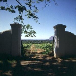 Suedafrika-Weingut Constantia 1987
