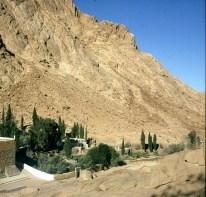 aegypten-sinai-kloster-garten 1981