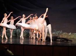 baltikum-ballett-37