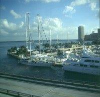 Miami Yachthafen