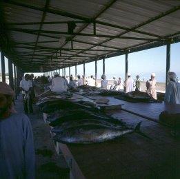 oman-sohar-fischhalle 1989