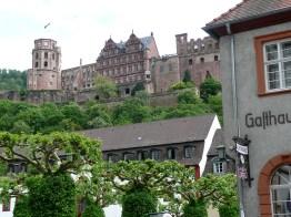 rhein-heidelberg-schloss