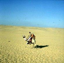 Gizeh-Sakkara-Kamelritt nach Gizeh Gerda 1978