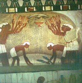 Edle-Grab des Nacht- Getreide werfeln