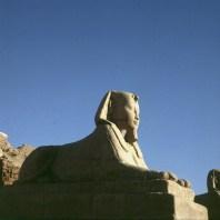 Luxortempel Sphinx 1777 Sockel ausgegraben