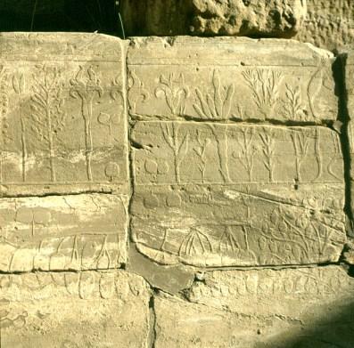 Karnak- Kadeschexpedition TutIII