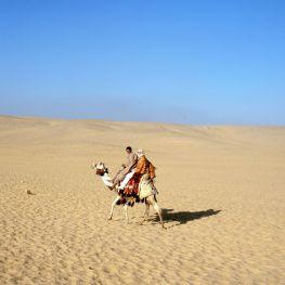 Ägypten Ritt auf dem Kamel