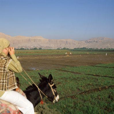 Ägypten Ackerbau