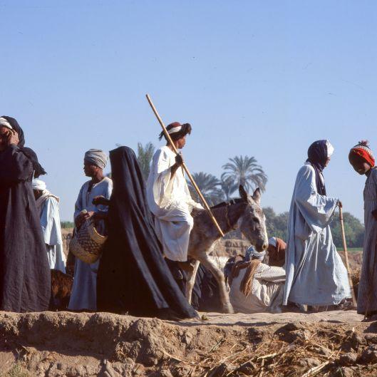 Ägypten Bevölkerung Esel