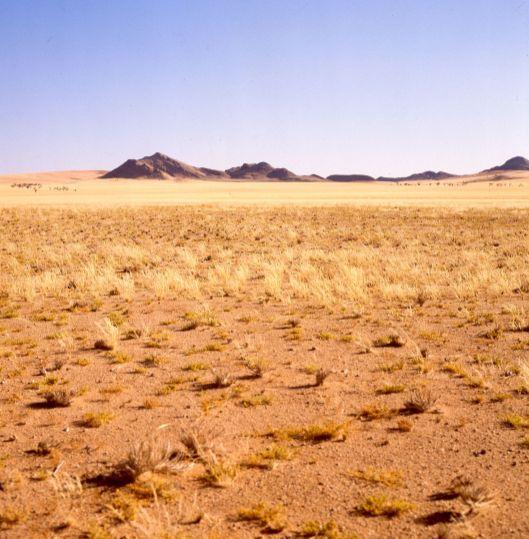 Südafrika 1987