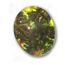 Ammolite w/Lichen