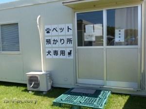 熊本地震避難所・再春館ヒルトップ・テント