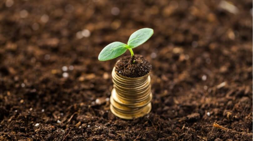 お金|画像|栄養士の給料|フリーランス
