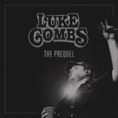 Beer Never Broke My Heart - Luke Combs