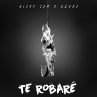 Nicky Jam & Ozuna - Te Robaré artwork