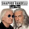 Shel Shapiro & Maurizio Vandelli - Love and Peace artwork
