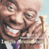 Louis Armstrong - What a Wonderful World  artwork